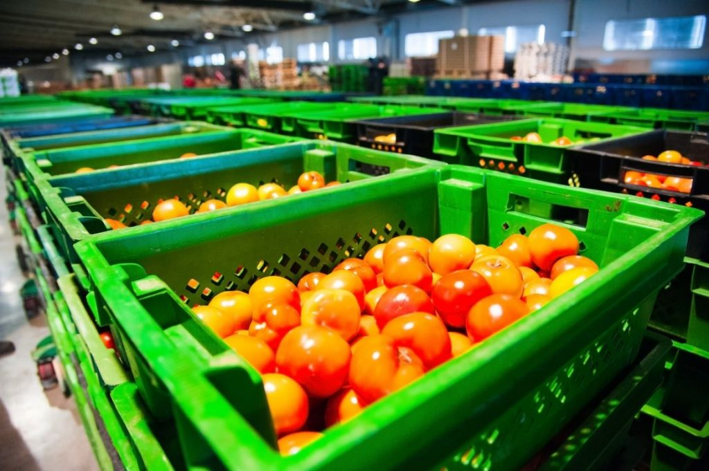 Keeping fruit cool in a factory at the perfect temperature is important